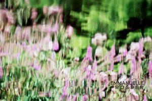 Jardin des Plaisirs.Emmanuelle Prosper