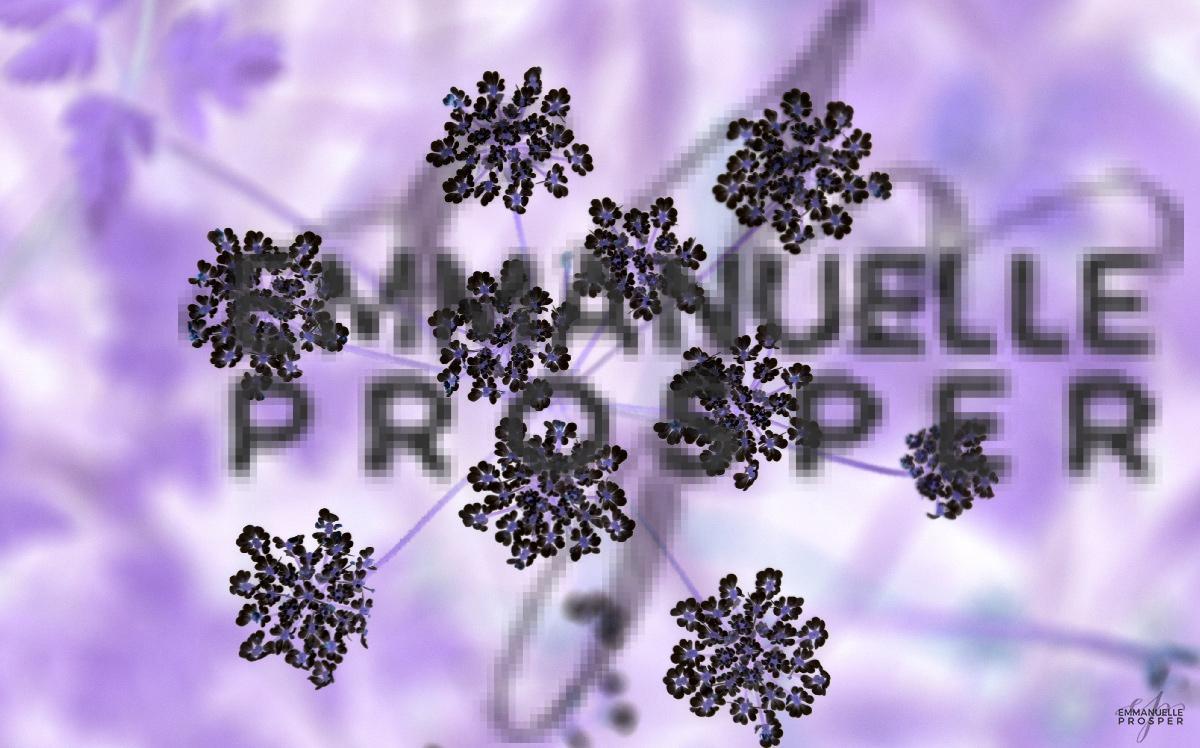 Délicates.Emmanuelle Prosper