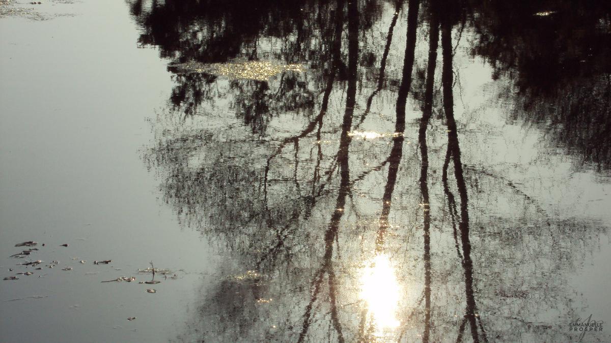 Eternity | Emmanuelle Prosper