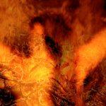 ardente