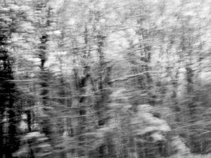 Fantômes.Emmanuelle Prosper