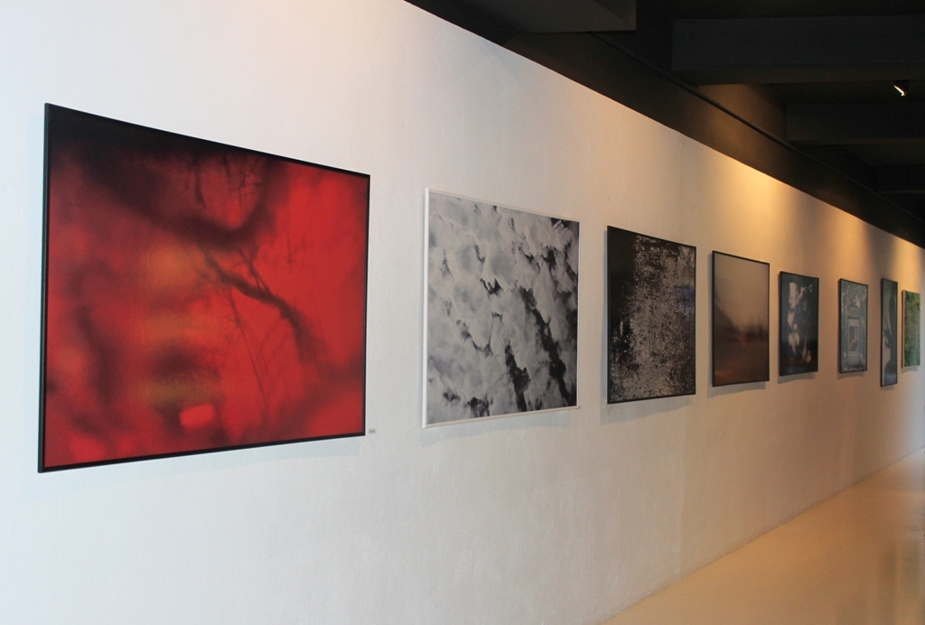 Expo solo Valencia